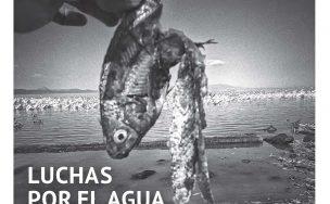 Clavigero 12 portada